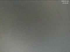 Live Spy Webcam PeepShos Brussels2