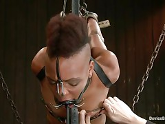 The chains are not enough for her as that babe groans being punished. This slut takes it hard, as hard as that babe can endure and her body ask for greater quantity as that babe gets hornier by the minute. Look at her hanging in chains, getting face hole fucked with a big black vibrator and humiliated as hard as possible, that babe wants greater quantity and will get it.