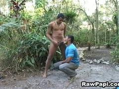 Homo latinos engulfing dick and banging arse